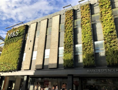 M&S Green Wall